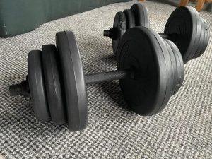 dumbbell set focus fitness