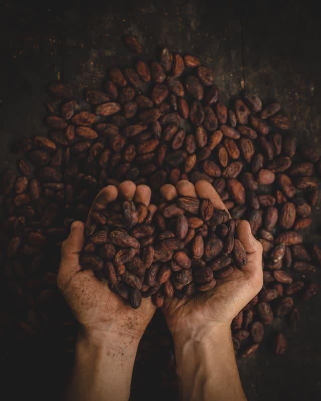 cacoabonen voor chocolade